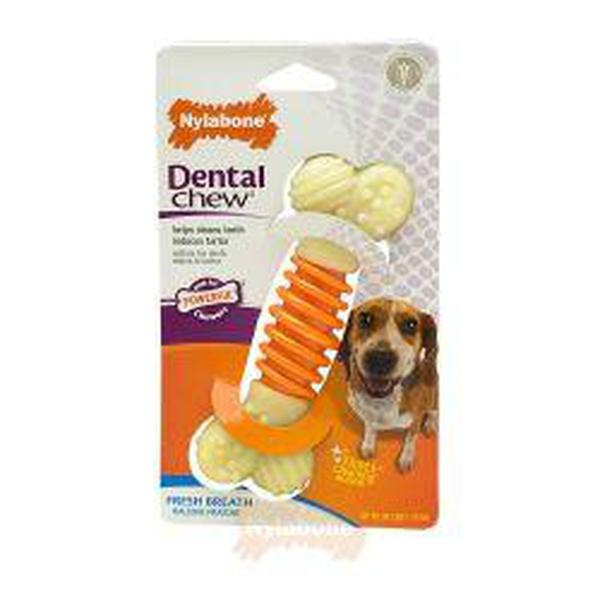 Nylabone Pro-Action Dental - Medium, sgl