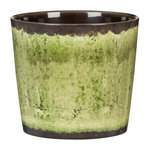 Stylish planter/Cover pots - Dibleys