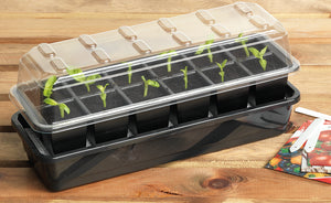 12 Cell Self Watering Seed Tray - Dibleys