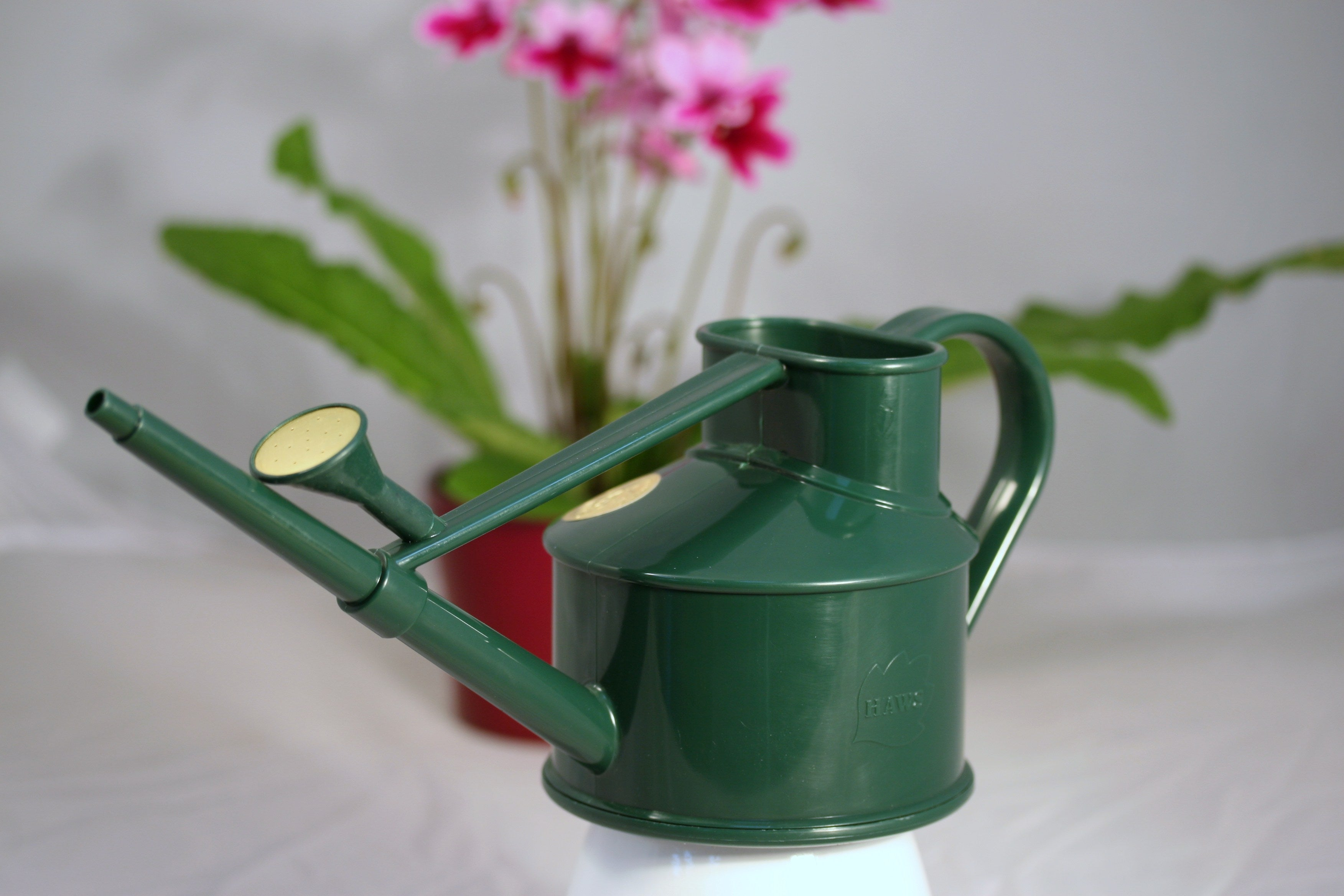 Haws Heritage Indoor Watering Can - Dibleys
