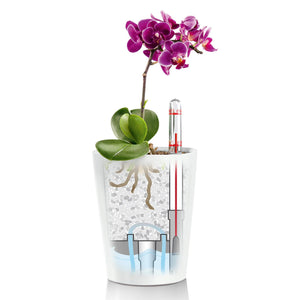Self-watering Lechuza Tabletop Planter - Dibleys