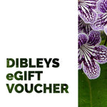 Dibleys eGift Voucher - Dibleys