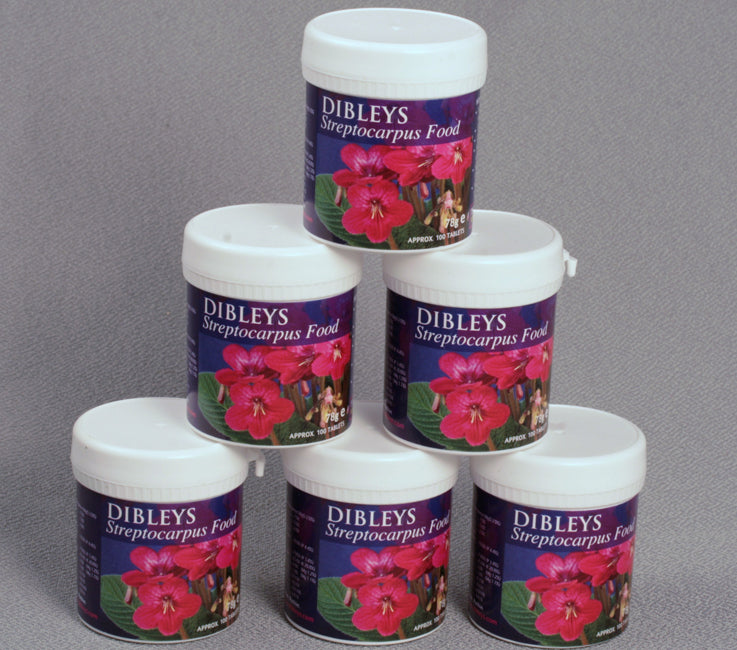 Dibleys Streptocarpus Food Tablets - Dibleys