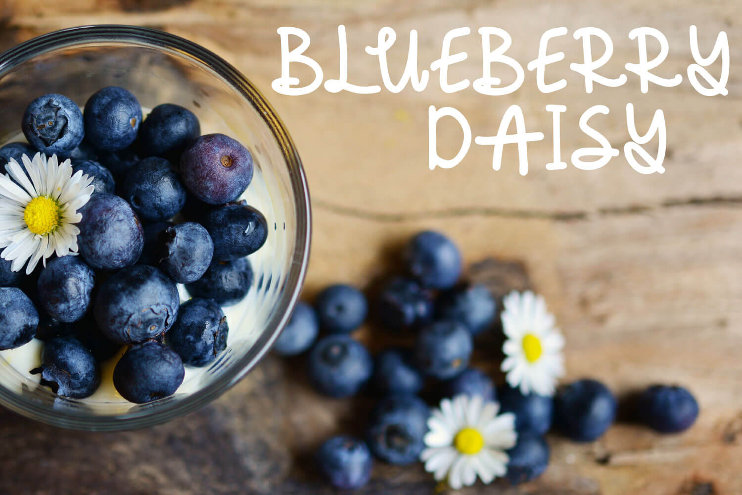 Blueberry Daisy: A Fun Handwritten Font - SVG, PNG, DXF