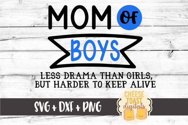Mom of Boys Less Drama But Harder To Keep Alive