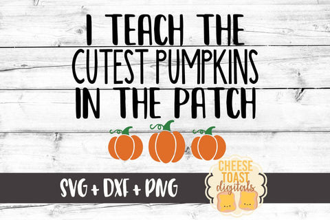 I Teach the Cutest Pumpkins in the Patch - SVG, PNG, DXF