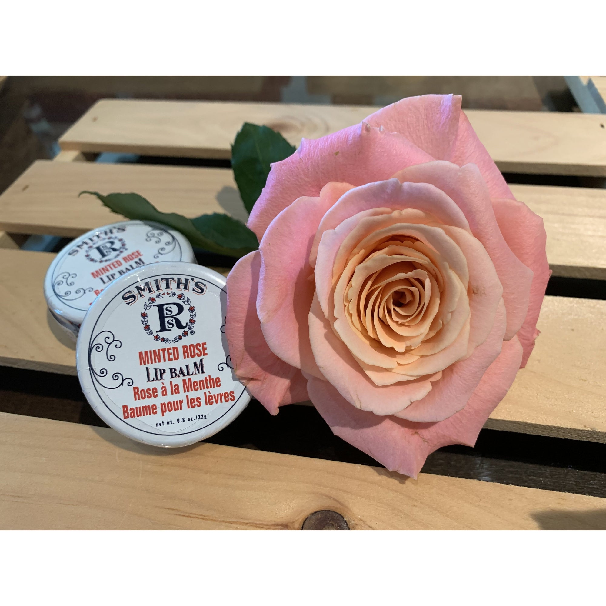 Rosebud Perfume Co. Minted Rose Lip Balm Tin 22g