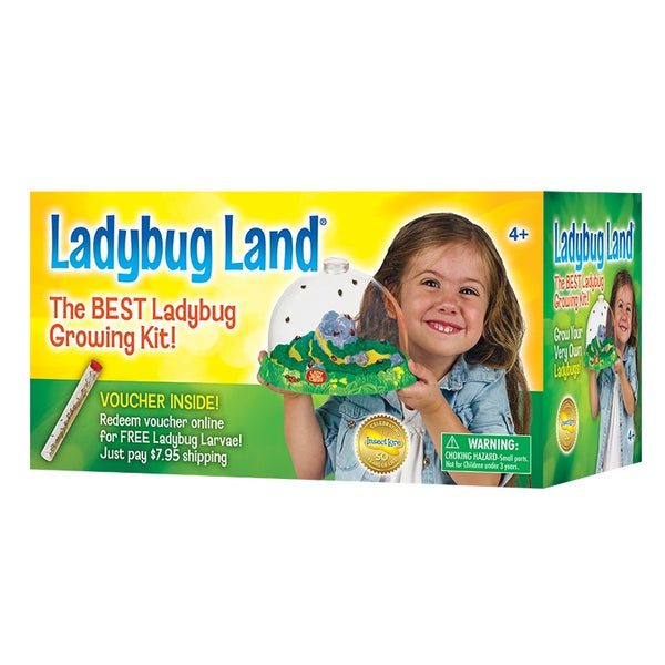 Ladybug Land with Voucher