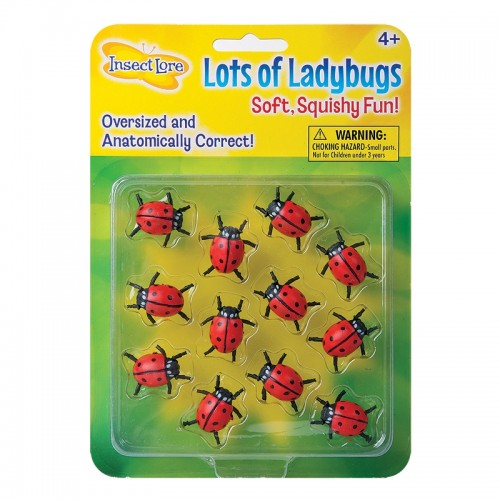Lots O' Ladybugs