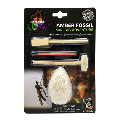 Amber Fossil Dig