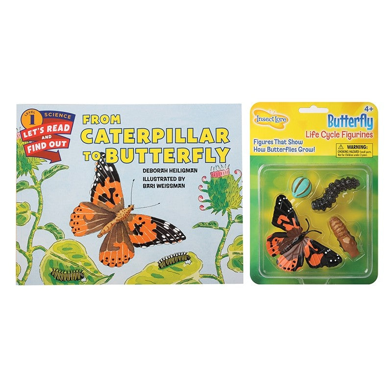 From Caterpillar to Butterfly Bundle