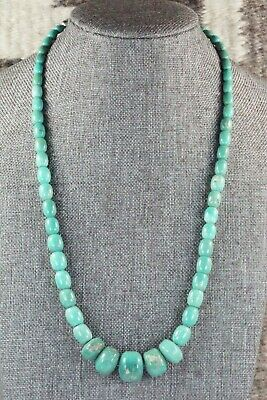 Turquoise & Sterling Silver Necklace - Louise Joe