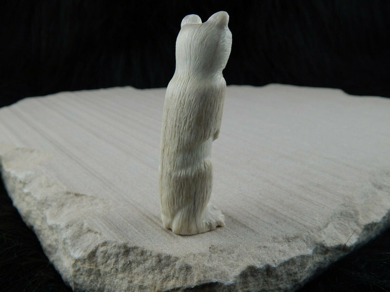 Bear Zuni Fetish Carving - Maxx Laate - High Lonesome Trading