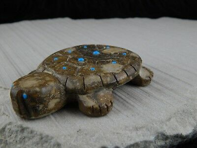 Turtle Zuni Fetish Carving - Reynold Lunasee - High Lonesome Trading