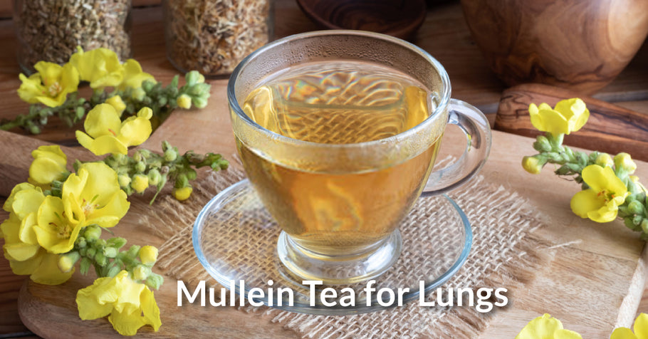 Improve Lung Function with Mullein Tea
