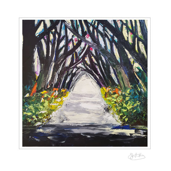 Dark Hedges - Limited Edition Print