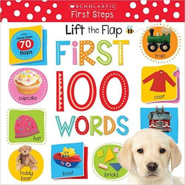 Libro levanta la solapa: First 100 Words