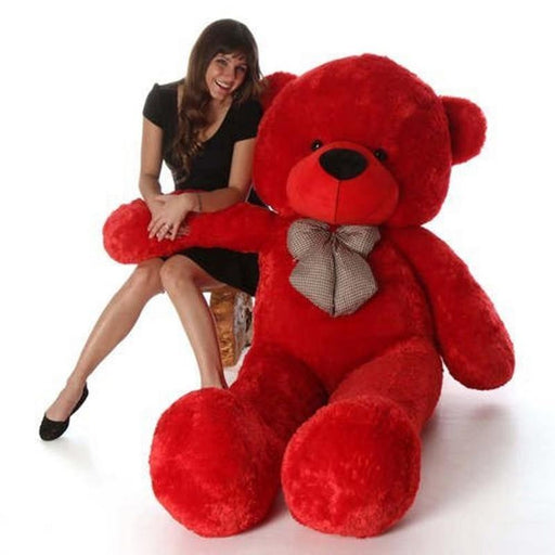 80Cm Red Teddy With Tie - 3ft only in Bigswipe