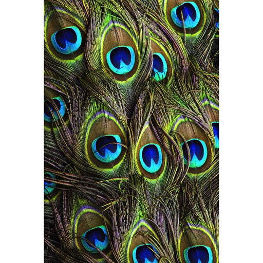 Printed Mobile Case Cover for LAVA X8