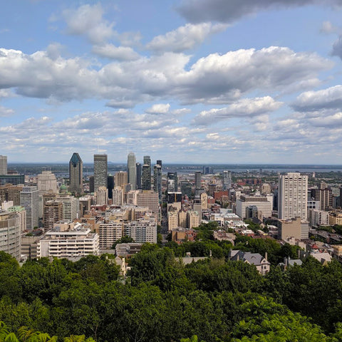 A view of Montreal from Mont Royal