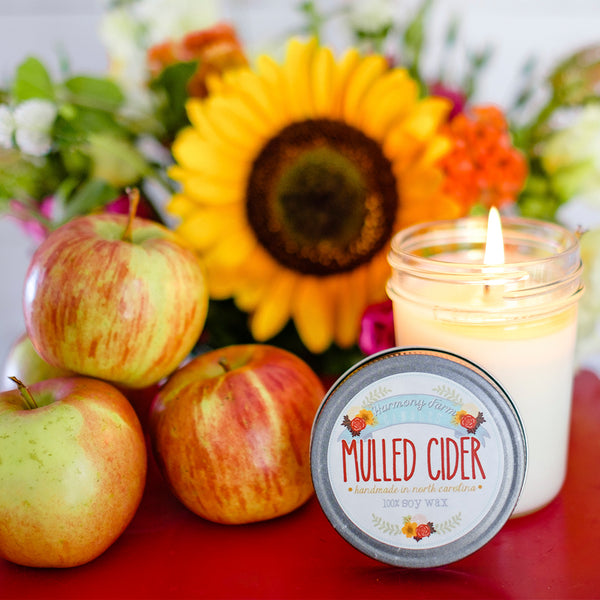 Mulled Cider Jelly Jar Candle from Harmony Farm Candles