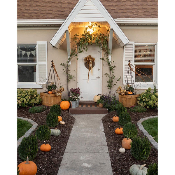 Neutral cottage decorated with pumpkins