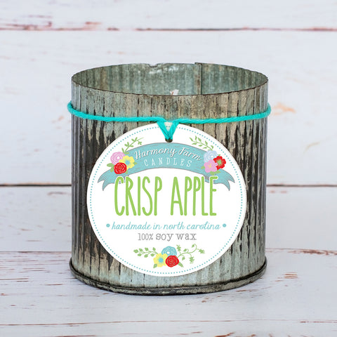 Crisp Apple Soy Wax Candle in Zinc Jar