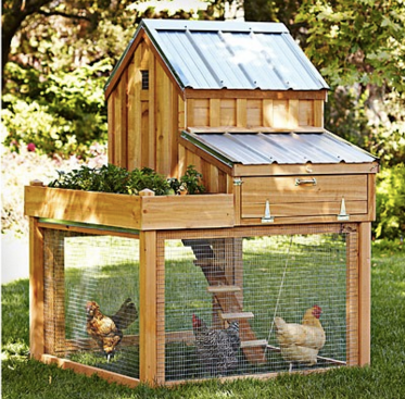 cedar chicken coop with two levels, egg drawer, planter