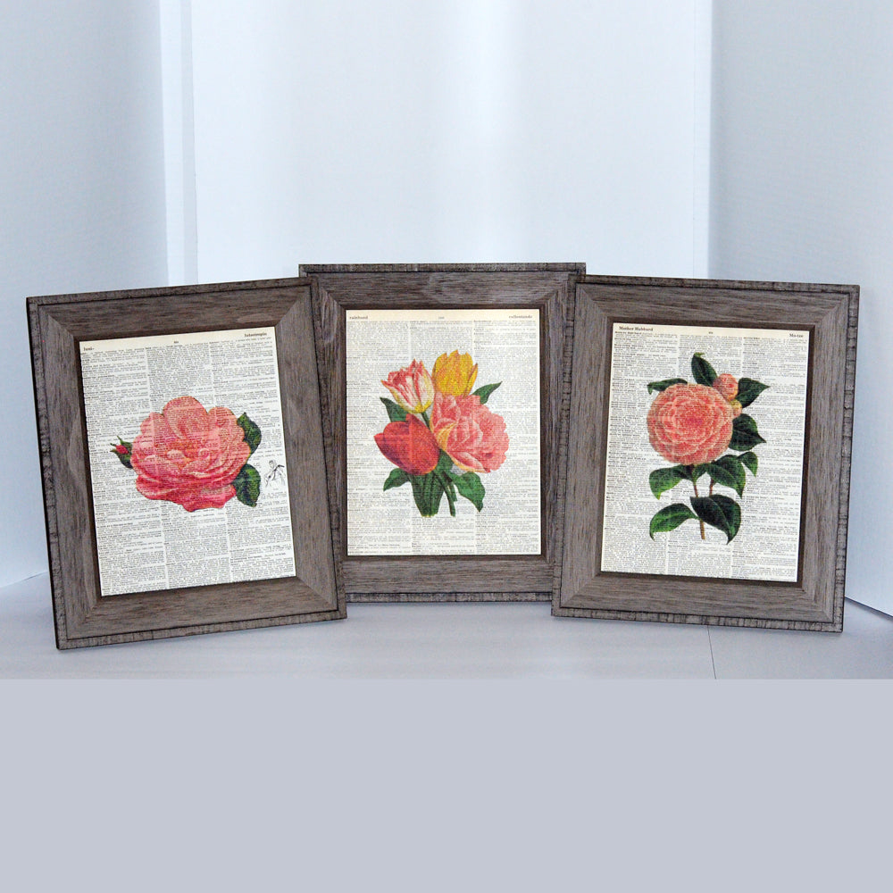 coral set collection, three art prints on vintage book pages, original