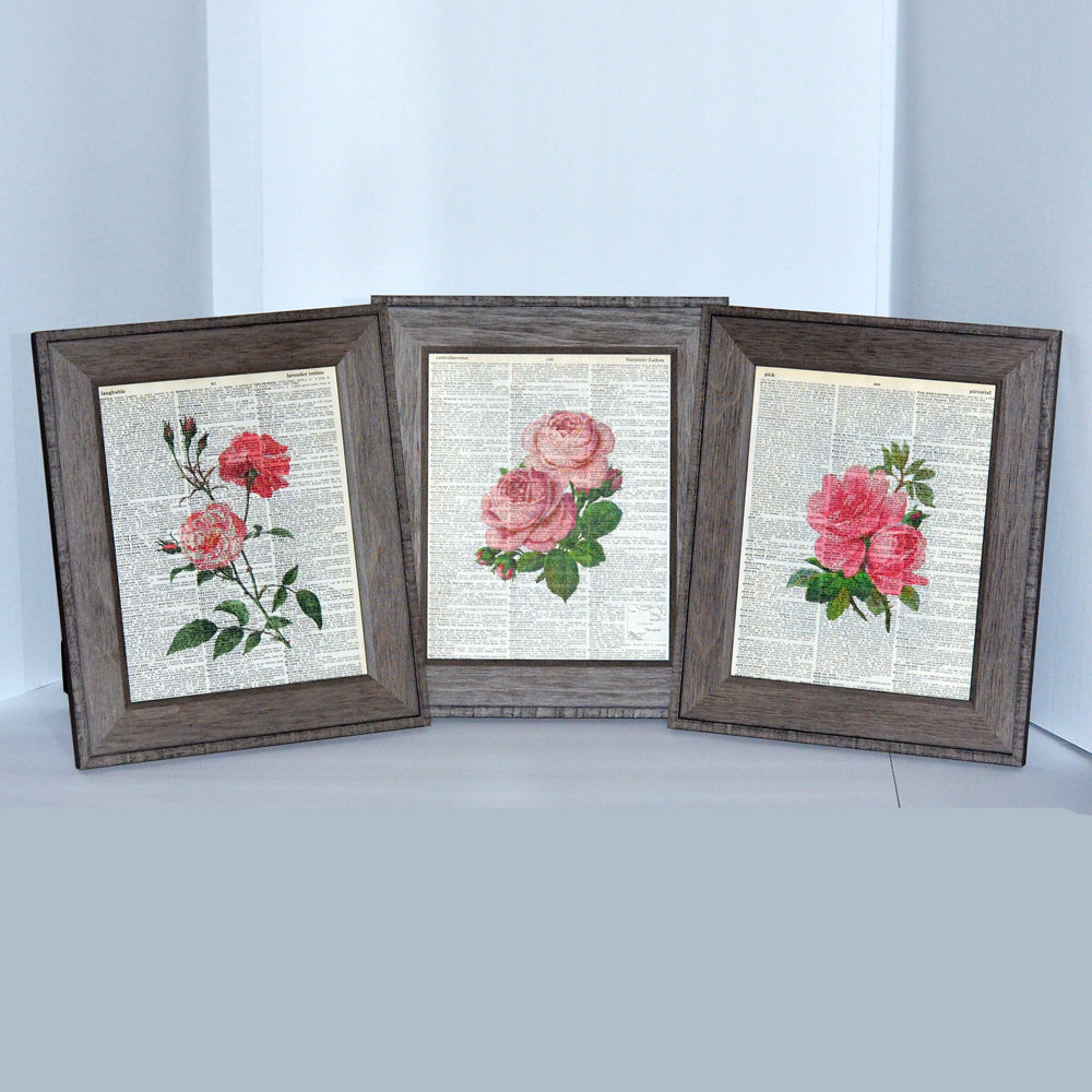 pink set collection, three art prints on vintage book pages, original