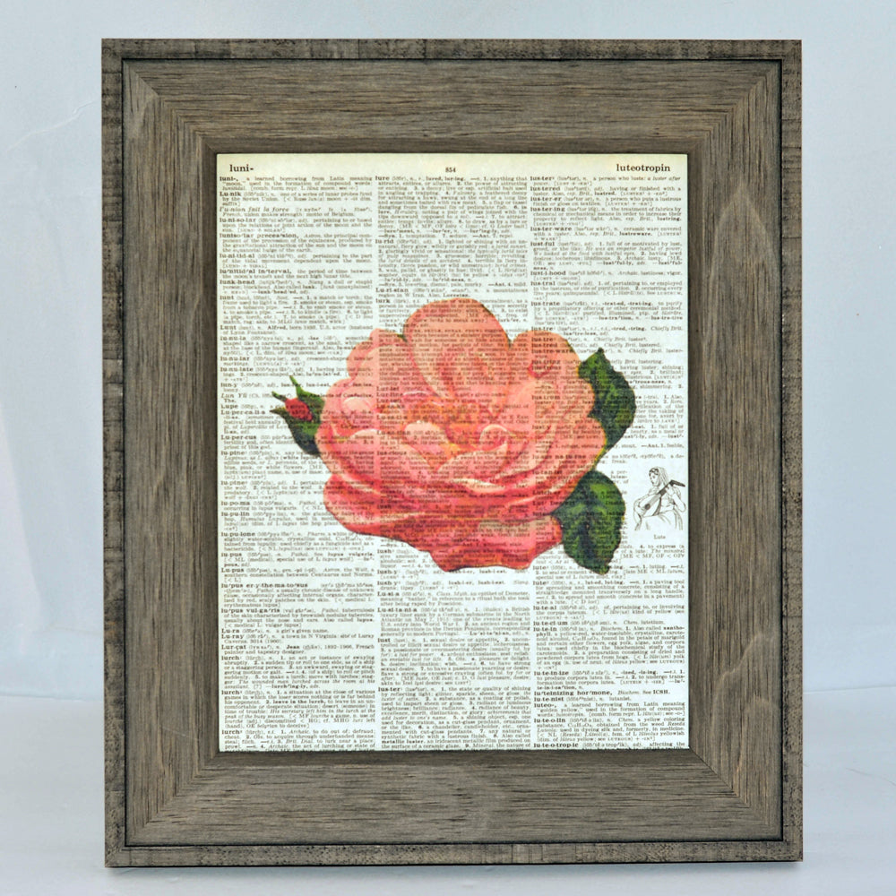 rose art print on vintage book page, original