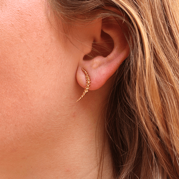 Celestial Curved Gold Studs