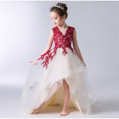 FG157 Red wine lace Princess girl dresses (3 Styles)
