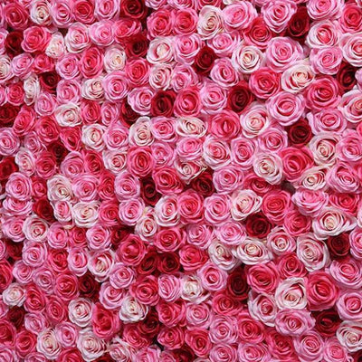 50Pcs/lot Artificial Rose heads for DIY Wedding,Party,Home Decor