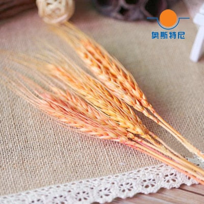 Dried ear of wheat for Wedding & Event Decor