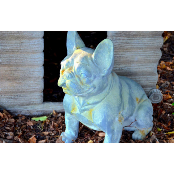 Reproduction French Bulldog Statue
