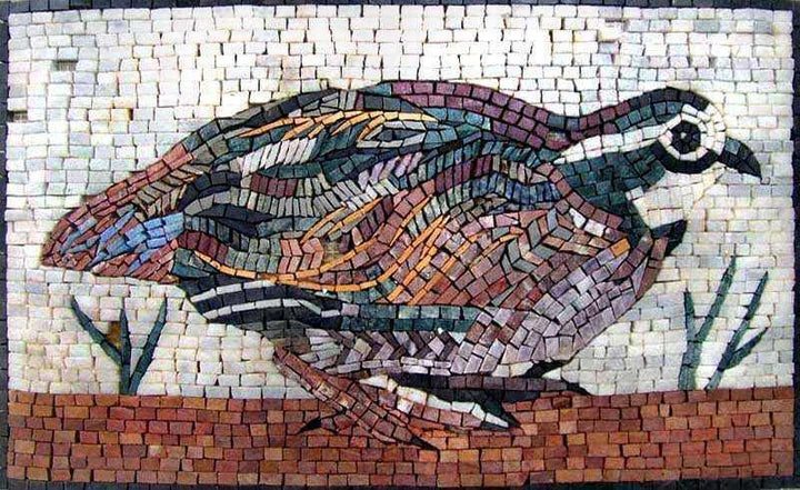 Mosaic Designs - Phasianidae