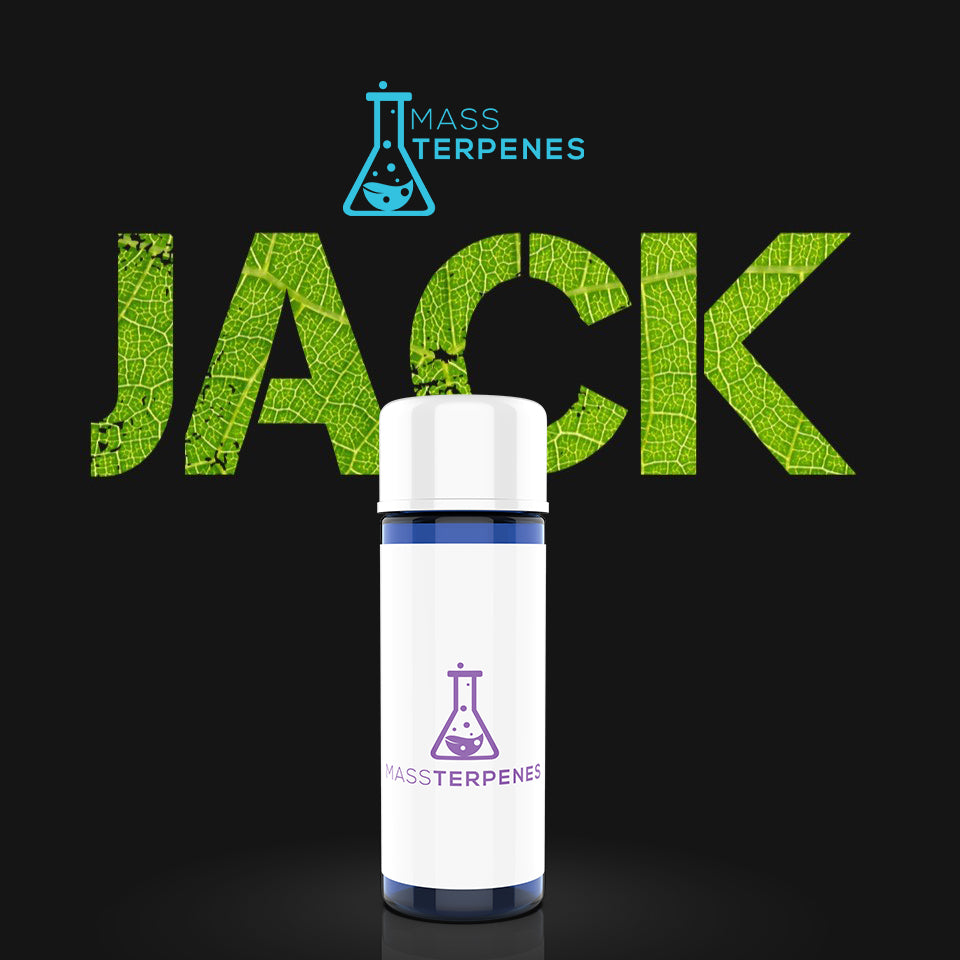 Black Jack Herer terpenes