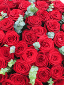 50 Red Roses (50% Off Will be Applied at the Cart)
