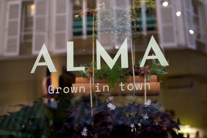 vitrine alma grown in town