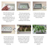 Hydroponic Garden Grow Kit (6 hole)