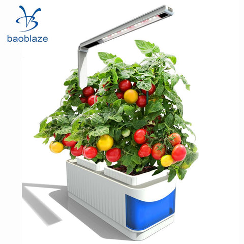 Hydroponics Indoor Herb Garden Kit