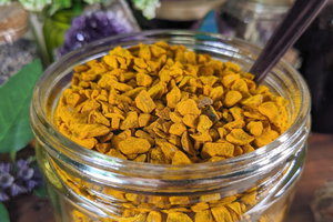 Turmeric - 1 oz Bag