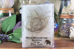Wooly Mammoth Hair Specimen