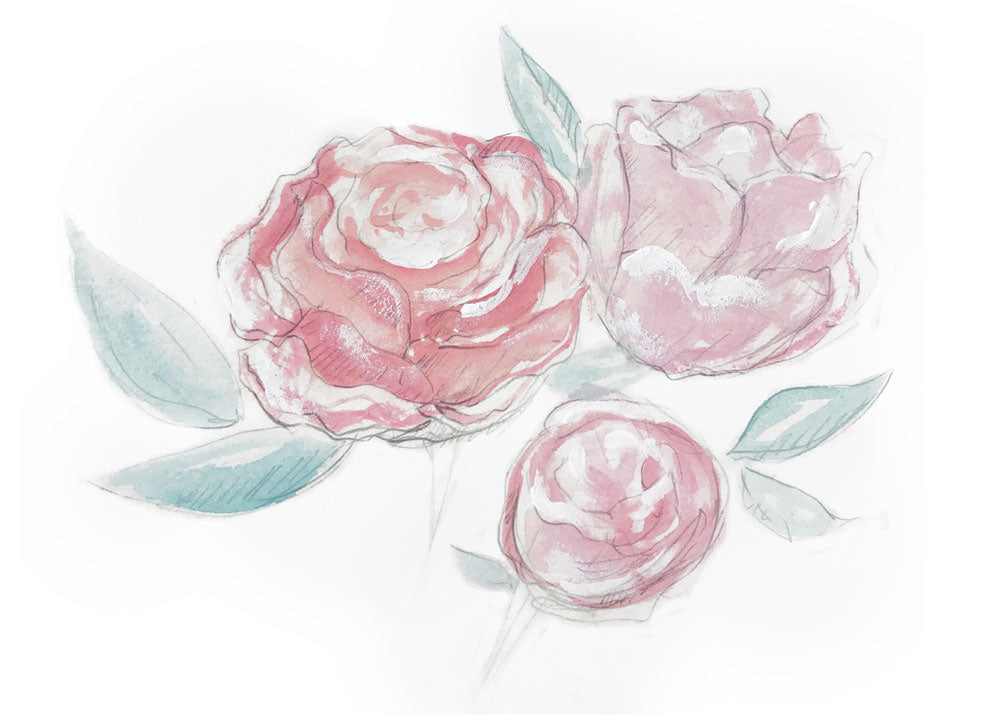 Rose Vancouver illustrated by artist Karlie Rosin Studio Full Bloom flowers
