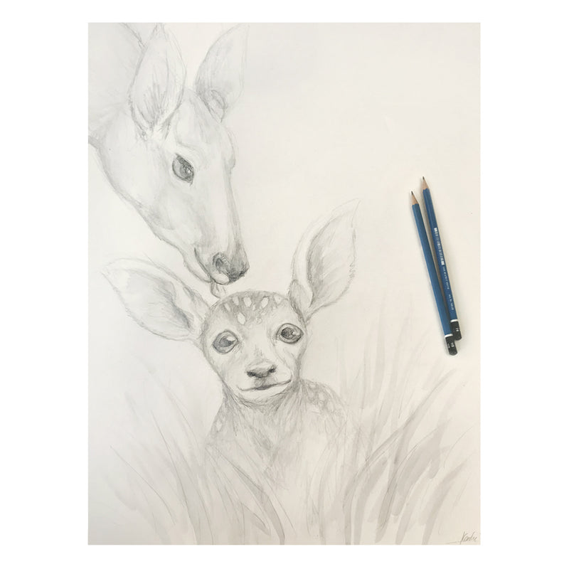 Original Art | Fawn & Mother Deer Illustration | Pencil and watercolour sketch 16x20
