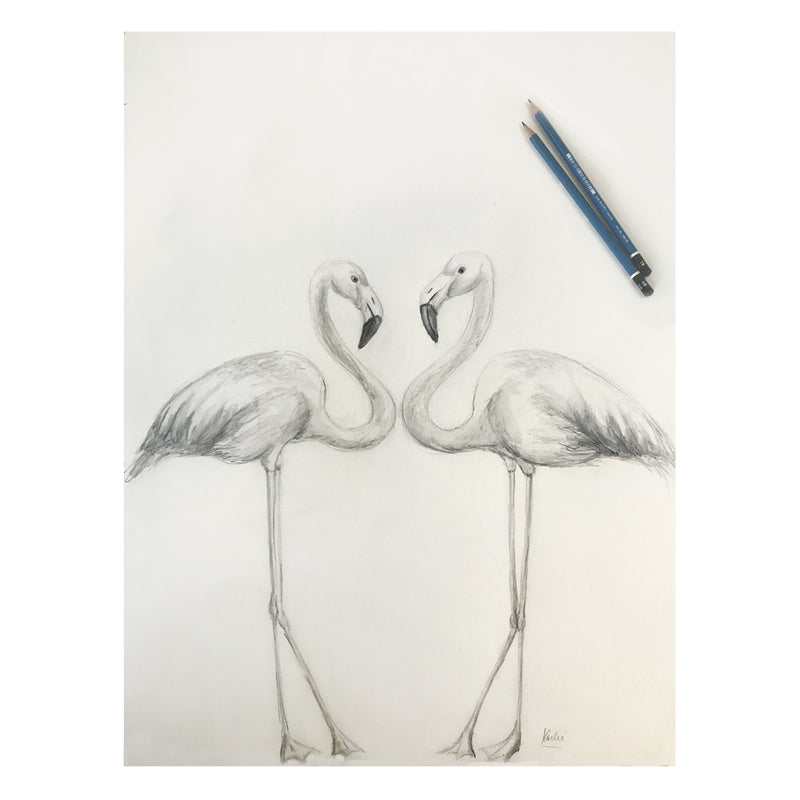Flamingo Duo Illustration | Pencil and watercolour sketch | 8x10, 11x14 PRINTS