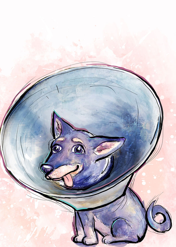 Cone Head, Dog Illustration | Pawsitive Wishes Collection | 5x7, 8x10, 11x14