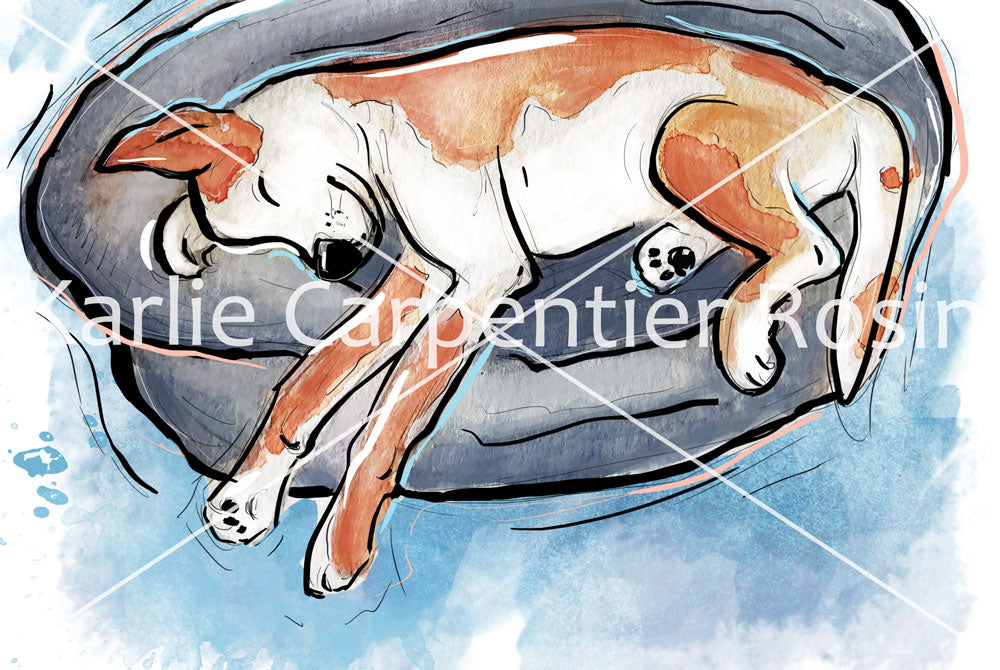 Snoozing Dog Illustration | Pawsitive Wishes Collection | 5x7, 8x10, 11x14