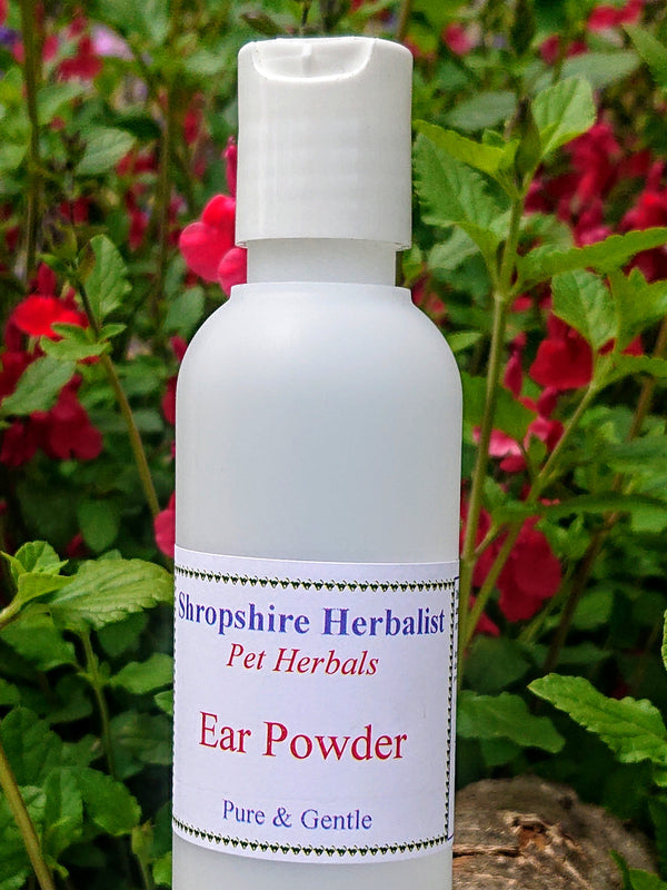 Natural Ear Powder